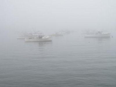 Mainelobsterboatsinfog