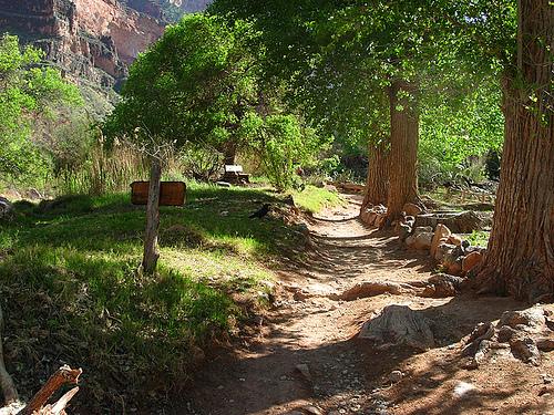 Canyonindiangardenscedarmesa
