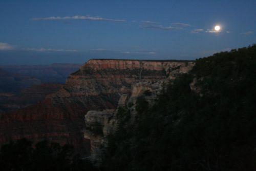 Canyonmoongubbyblog.blogspot