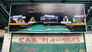 Buenosairesgraffiti