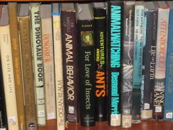 Abirdbookjoebooks
